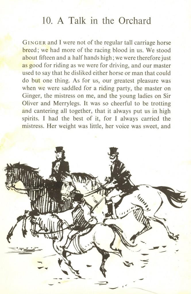 Horseback Riding in Prince George, Virginia