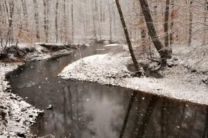 Swan Creek and snowflakes