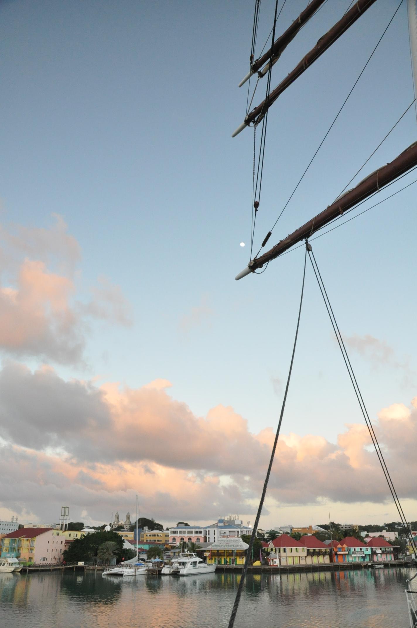 Sea Cloud 1: Bon Voyage