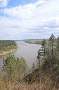 The Nemunas, looking up-river