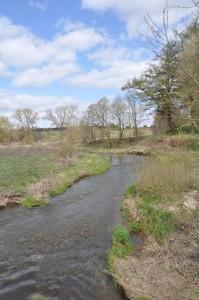 looking upstream--the Peršekė River