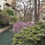 Texas Break 1: The River Runs Through It