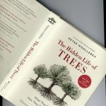 "Book # 11 in 2018: ""The Hidden Life of Trees"" by Peter Wohlleben"
